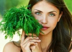 Как заработать на выращивании зелени?