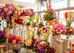Открытие магазина цветов – все нюансы прибыльного бизнеса