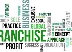 Лучшие франшизы для женского бизнеса