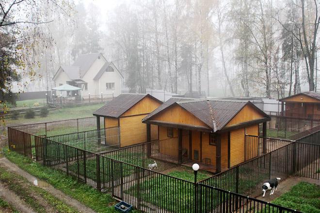 Изображение - Гостиницы для животных gostinica-dlya-zhivotnih-3