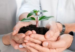 Какие существуют программы поддержки малого бизнеса в 2017?