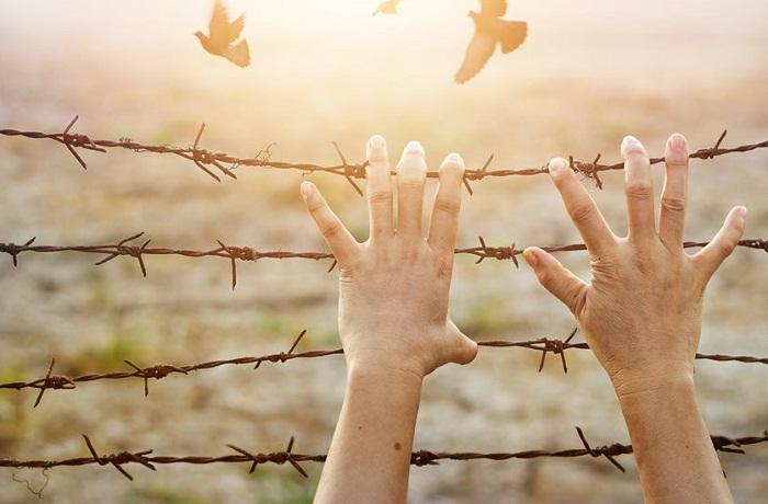 стремление к свободе