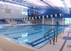 Бизнес план бассейна: как открыть бассейн от 25 до 50 метров