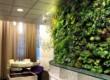 Фитостены: 3 способа заработка на экологичном бизнесе