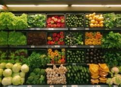 Как открыть овощной магазин - 3 формата ведения бизнеса