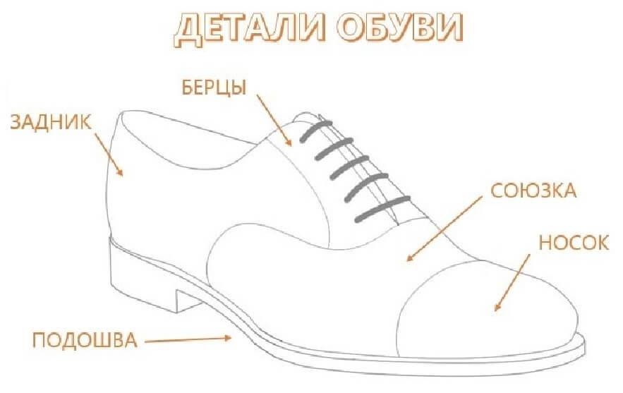 Из чего состоит обувь