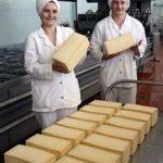 Бизнес план производства сыра